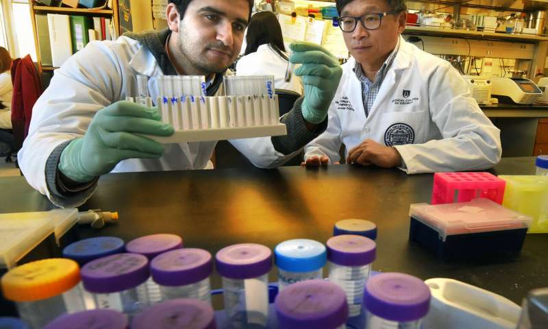 Scientists connect dots between colitis and colon cancer