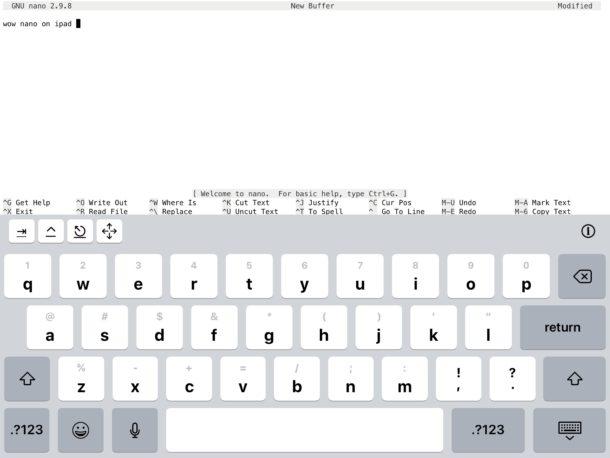 Nano on iPad