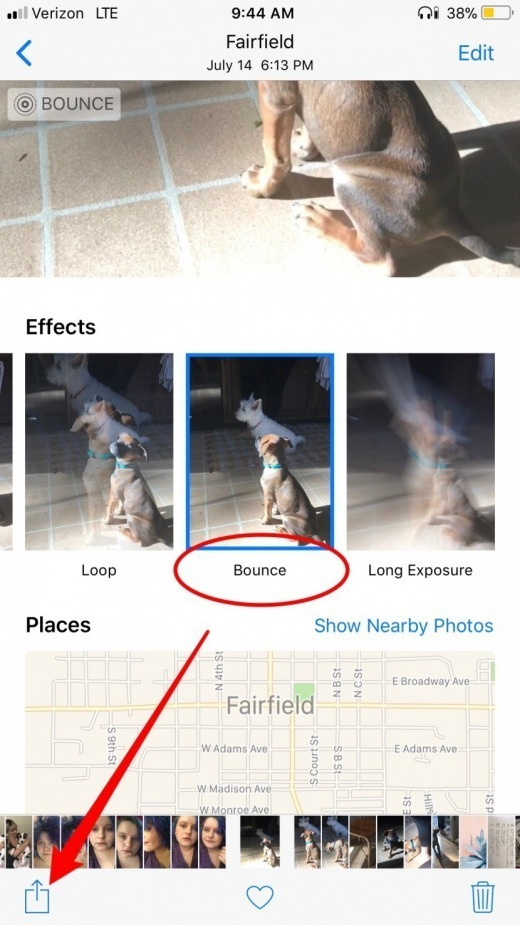 Live Photos: The Complete Guide to iPhone's Moving Pictures (UPDATED FOR iOS 11)   iPhoneLife.com