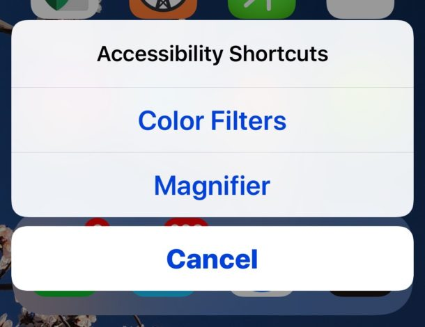 How to Set & Use the Accessibility Shortcut on iPhone and iPad